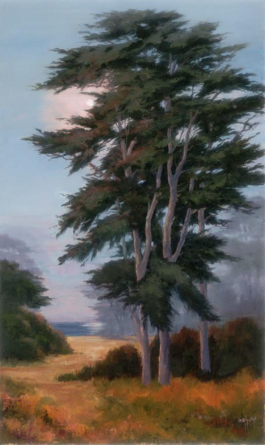 Moonlit Cypress