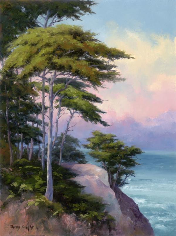 Sunlit Cypress