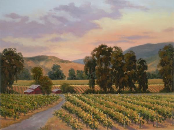Central Coast Vineyard