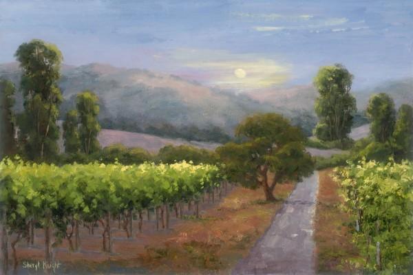 Moonlit Vineyard – Sheryl Knight 12 x 18